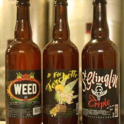 3 bouteilles de biere_brasserie artesienne_kit a biere_biere sans gluten_a facon.jpg